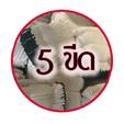 5 ขีด