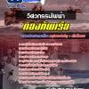 วิศวกรรมไฟฟ้า สัญญาบัตรกองทัพเรือ