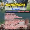 [[new]]สอบสัตวแพทย์ กรมปศุสัตว์ Line:0624363738 โหลดแนวข้อสอบ