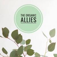 ร้านThe Organic Allies