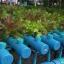 ชุดแปลงปลูกผักอัตโนมัติ ขนาด 150 หลุมปลูก ระบบน้ำขึ้น-น้ำลง(FAD) thumbnail 5