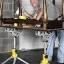 ROCKWELL RK9033 JawStand Portable Work Support Stand - สามขาสำหรับยึดจับงานไม้ งานบ้าน สารพัดประโยชน์จาก Rockwell U.S.A. thumbnail 14