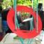 แป้นเห็ด ชนิดถอดเข้า-ออก thumbnail 1
